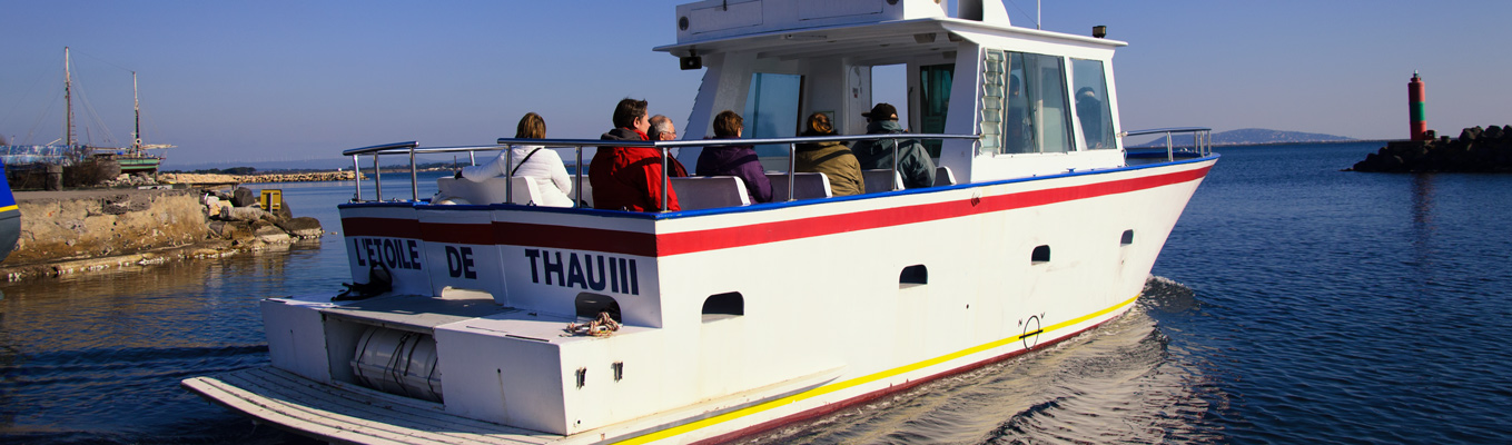 sortie bateau port de marseillan