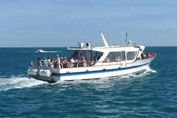 promenade bateau marseillan